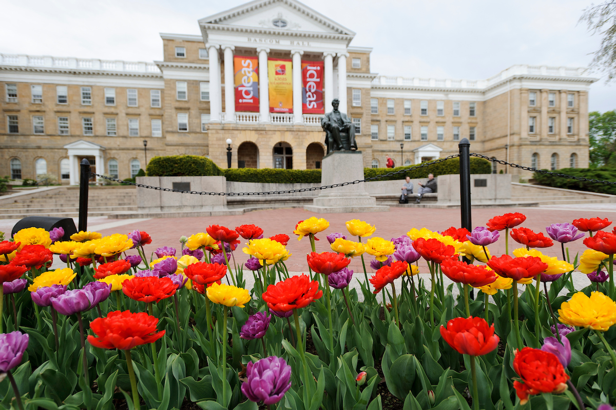 Tulips bloom in front of the Abraham Lincoln statue and Bascom Hall at the University of Wisconsin-Madison